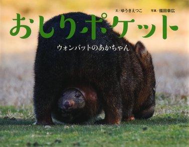 ウォンバットってどんな動物?かわいすぎる性格と生態、食べ物などをご紹介!画像
