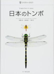 5分でわかるトンボの生態!種類ごとの特徴、複眼や羽の仕組みなどを解説!画像
