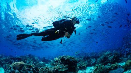 5分でわかる潜水士!需要が高く年収も安定。国家資格の概要や資格を活かせる転職先も解説!画像
