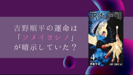 『呪術廻戦』吉野順平の運命は「ソメイヨシノ」が伏線だった!?呪術師と花言葉を考察!画像
