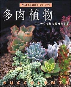 多肉植物の育て方をご紹介!育てやすい種類から難しい水やりまで画像