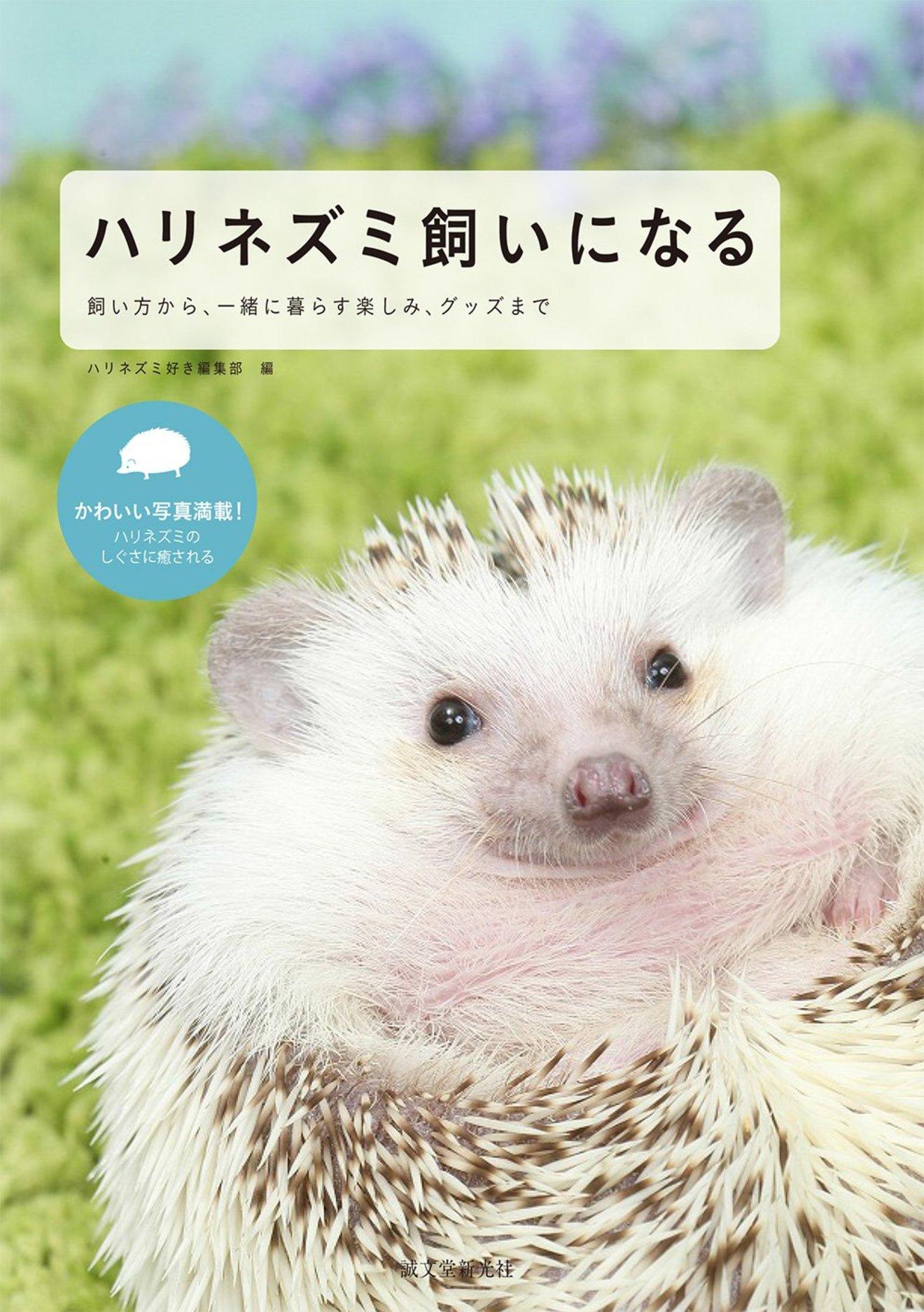 ハリネズミの飼育方法を紹介!基本から注意点、おすすめ本まで