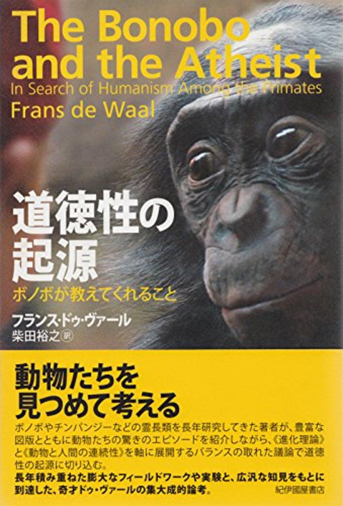 ボノボの生態をご紹介!セックスが平和をもたらす?人間に一番近い類人猿