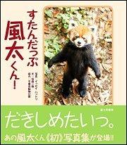 意外と知らないレッサーパンダの生態!かわいいだけじゃない性格や特徴を紹介画像