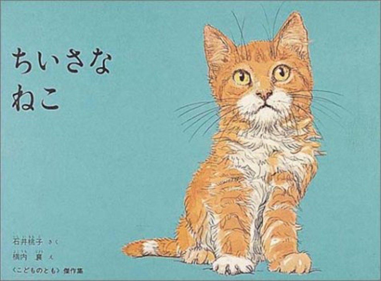 猫が好きな人におすすめの絵本5選!読めば癒されること間違いなし!