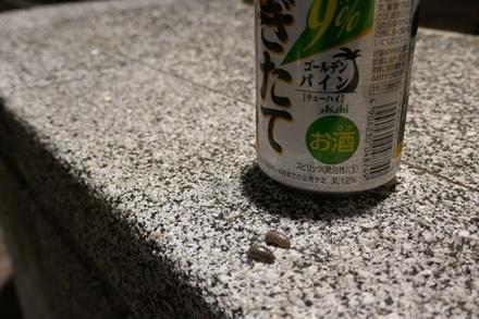 【第7回】生垣に突っ込んで転んだ話(25歳・晩秋)画像