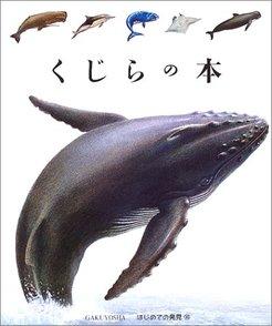 クジラの体はなぜ大きい?世界最大の哺乳類の謎に迫る3冊画像