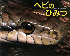 ヘビの飼育方法って?飼いやすい種類から、役立つ本まで紹介画像
