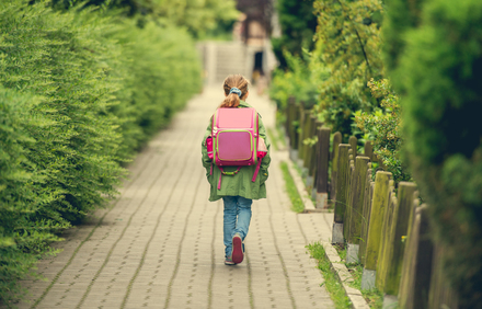 『駅までの道をおしえて』あらすじ、魅力をネタバレ!伊集院静の短編が映画化画像