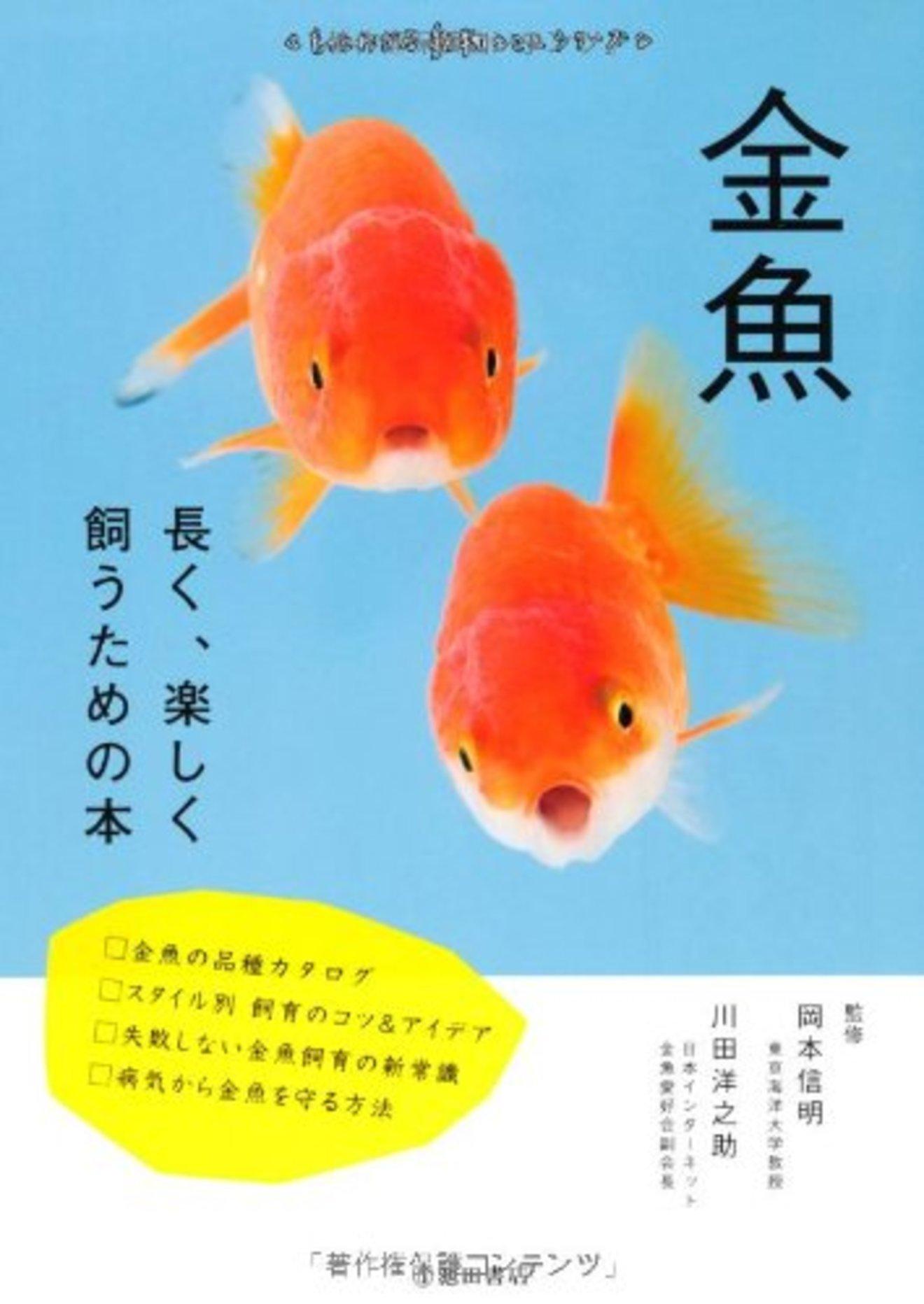 金魚の飼育方法を解説!身近だけれど正しい育て方、知ってますか?