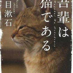尾崎花絵 プロフィール画像