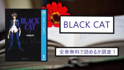 【ブラックキャット】全巻無料で読めるか調査!漫画バンクで読むのは危険?画像