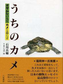 カメの飼育の基本を紹介!餌やりの仕方から、おすすめの本まで画像