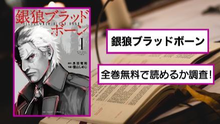 【銀狼ブラッドボーン】全巻無料で読める?アプリや漫画バンクの代わりに画像