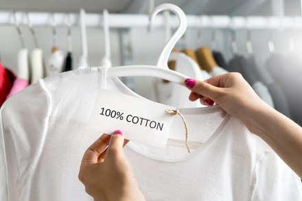 5分でわかるアパレル業界!ファストファッションの動向や今後の見通しなどを解説 画像