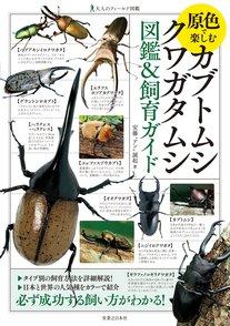 カブトムシの飼育方法を紹介!クワガタとの違いは?餌やりから種類画像