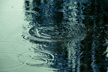 雨の日にどっぷり浸かりたい。孤独でロマンティックな本3冊画像