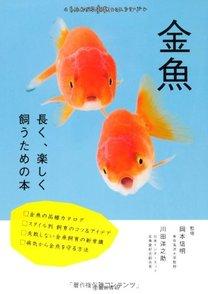 金魚の飼育方法を解説!身近だけれど正しい育て方、知ってますか?画像