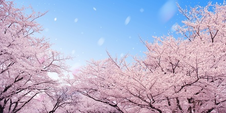 東京に馴染めずにいるあなたに贈る『東京百景』画像