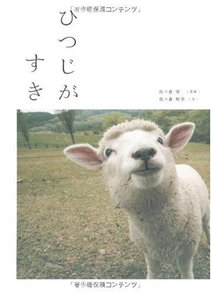 5分でわかる羊の生態!品種、角や目の特徴、性格などをわかりやすく解説!画像