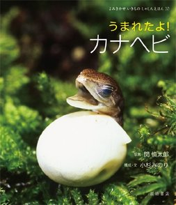 5分でわかるカナヘビの生態!種類や飼い方、卵、トカゲとの違いなどを解説画像