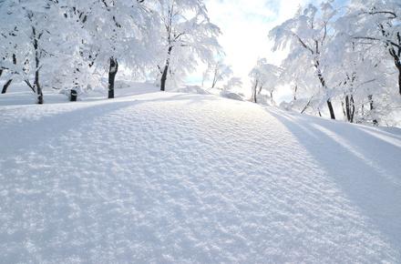 雪の山荘や館が舞台のミステリー小説おすすめ6選!クローズド・サークルの醍醐味!画像