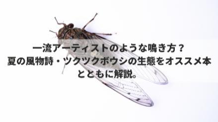 5分でわかるツクツクボウシ!鳴き声にはパターンがある?時期や生態を紹介!画像