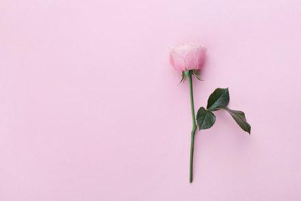 茨木のり子のおすすめ詩集5選!名作「自分の感受性くらい」が胸にささる画像