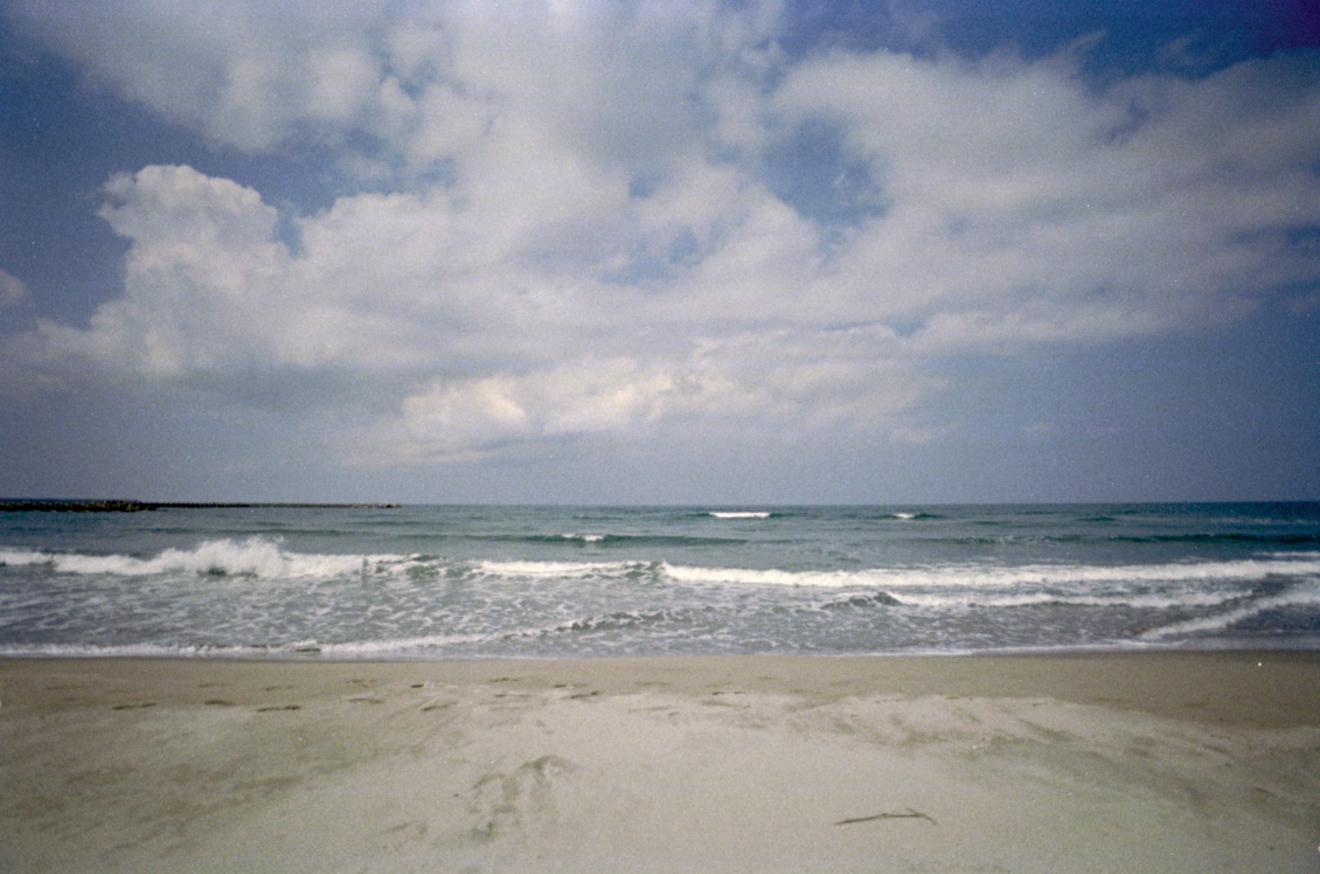 Alfred Beach Sandalが選ぶ「死にオチ四冊」