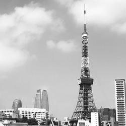 nanaseharuプロフィール画像