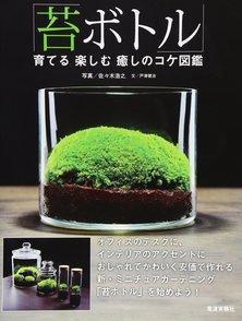 コケの栽培方法を簡単に紹介!苔の種類からテラリウムのコツまで画像