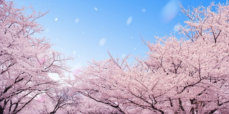 坂口安吾のおすすめ作品6選!代表作『堕落論』『白痴』以外にも名言多数!