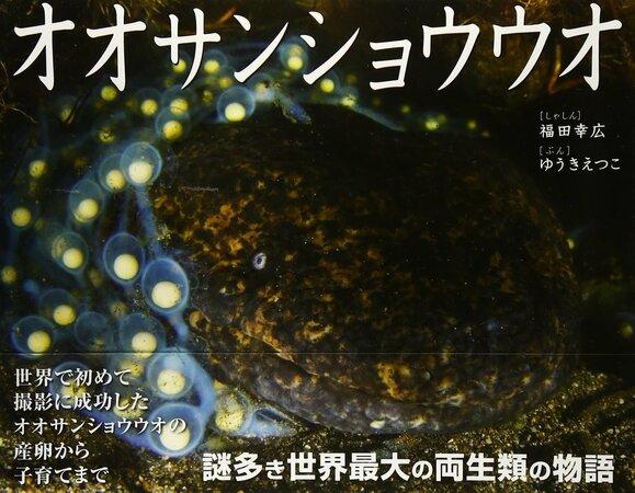 5分でわかるオオサンショウウオの生態!寿命、大きさ、飼育に味まで!