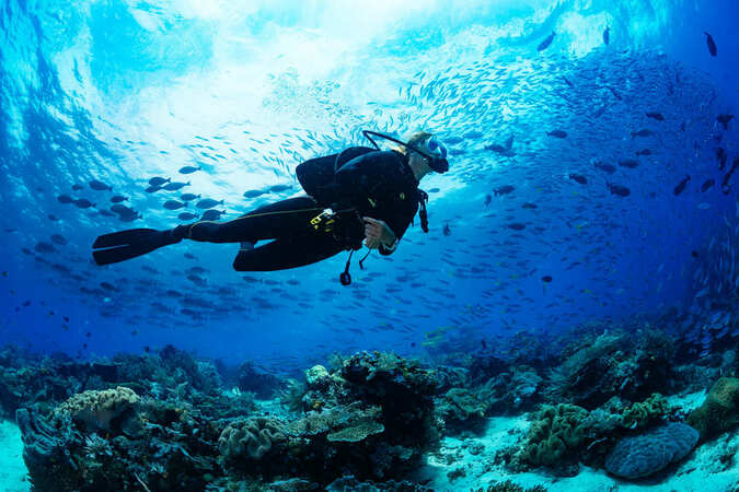 5分でわかるスキューバダイビングインストラクター!世界中の海が職場に!仕事内容や資格、収入などを解説!