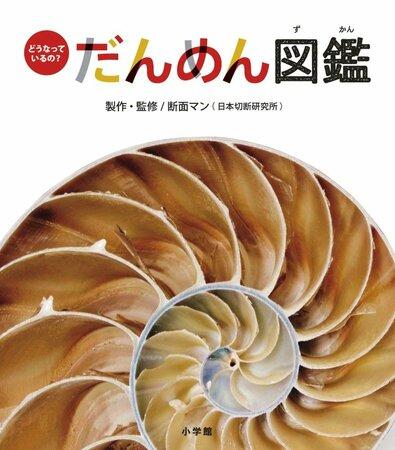 5分でわかるオウムガイ!生きる化石と呼ばれる生物の生態や飼育法を解説!