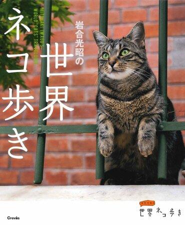 猫の写真集おすすめ5選!超絶かわいい!プレゼントにもどうぞ。