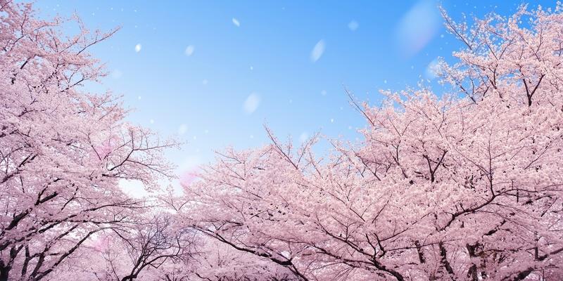 幸田露伴おすすめ傑作6選!読む勇気は、あなた次第。