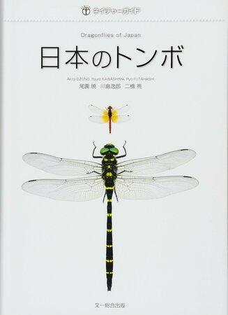 5分でわかるトンボの生態!種類ごとの特徴、複眼や羽の仕組みなどを解説!