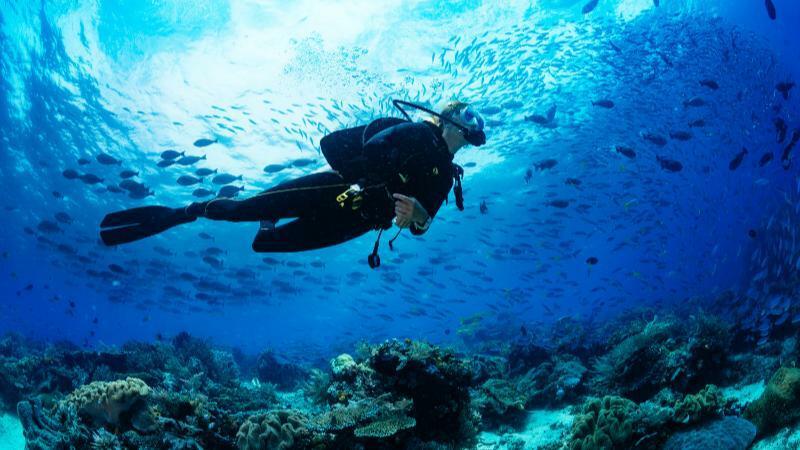 5分でわかる潜水士!需要が高く年収も安定。国家資格の概要や資格を活かせる転職先も解説!