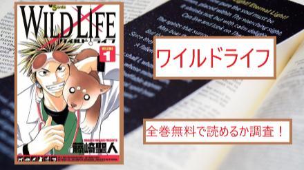 【ワイルドライフ】全巻無料で読めるか調査!漫画を安全に一気読み画像